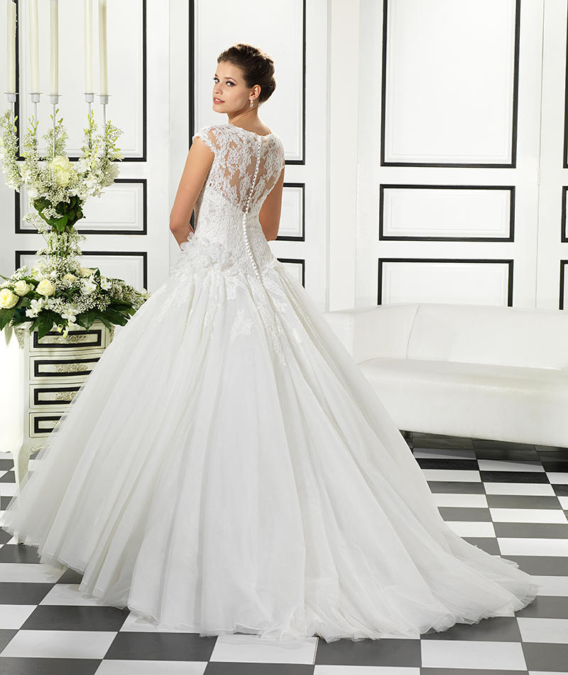 Corded Lace/Tulle