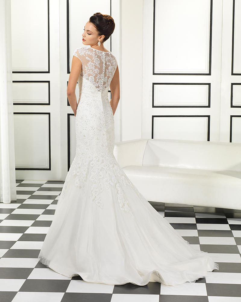 Corded Beaded Lace/Soft Tulle