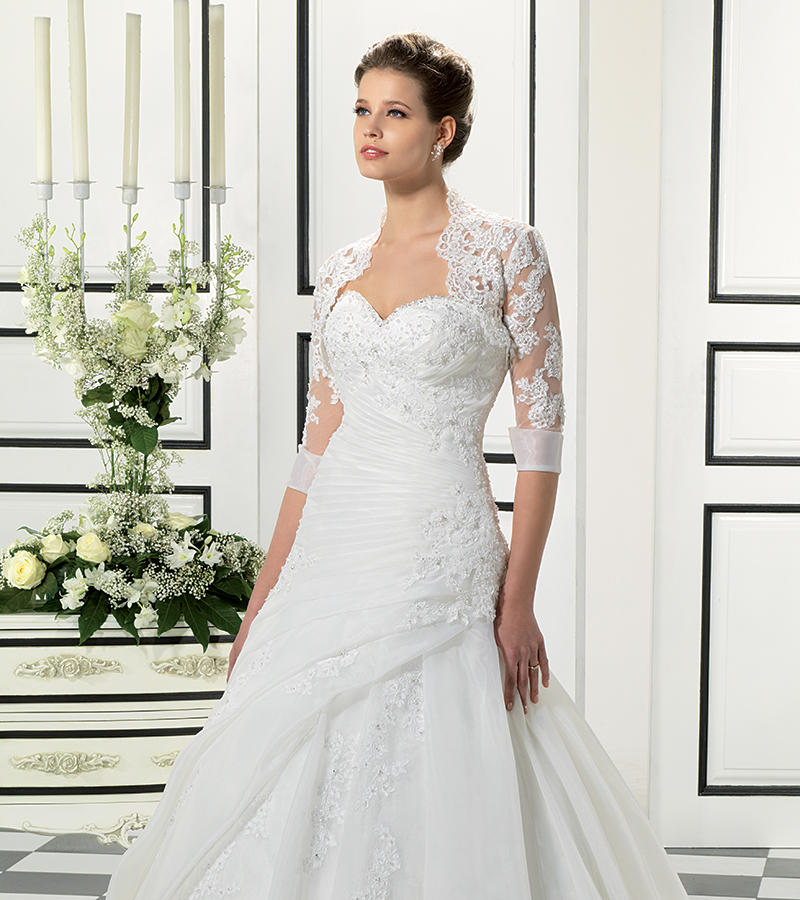 Organza/Beaded Corded Lace