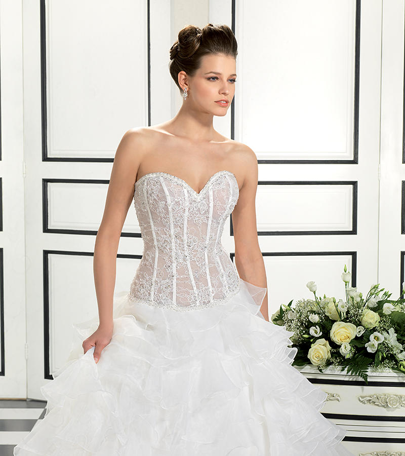 Organza/Beaded Corded Chantilly Lace