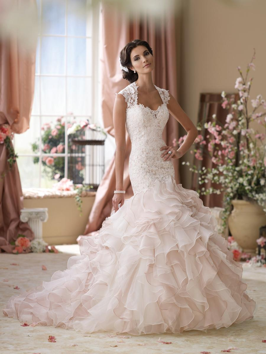 David Tutera in Stock Sale Dress