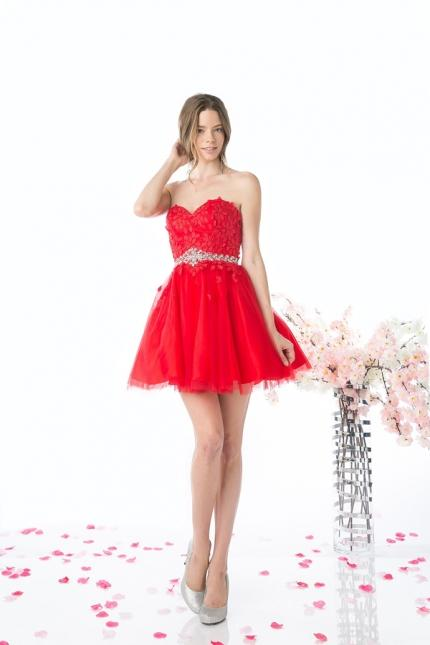 CD Strapless Sweetheart Short Prom Dress