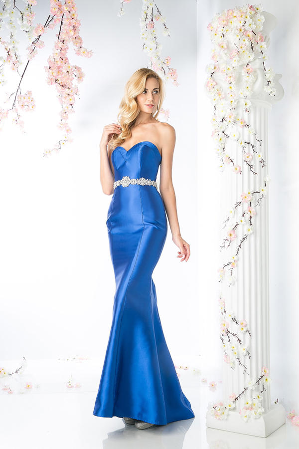 CD Strapless Gown