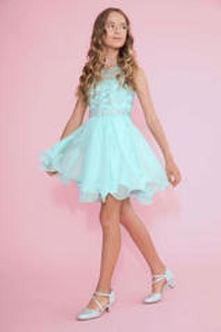 Beaded Bodice Mesh Skirt Dress