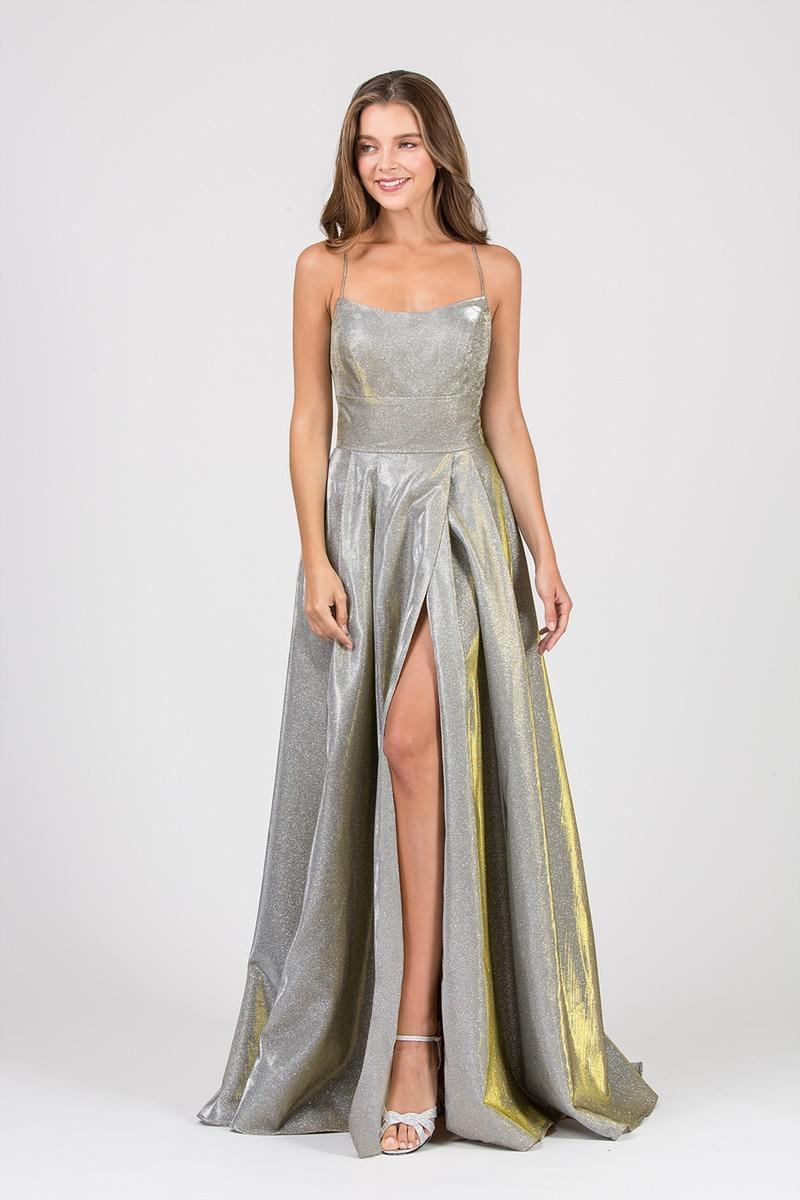 Chiffon Gown Lace Back